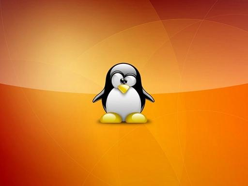 How to Fix: Linux Filesystem has Errors, MySql Database